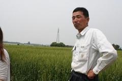 特別栽培米(減農薬)山根米谷島さんコシヒカリ